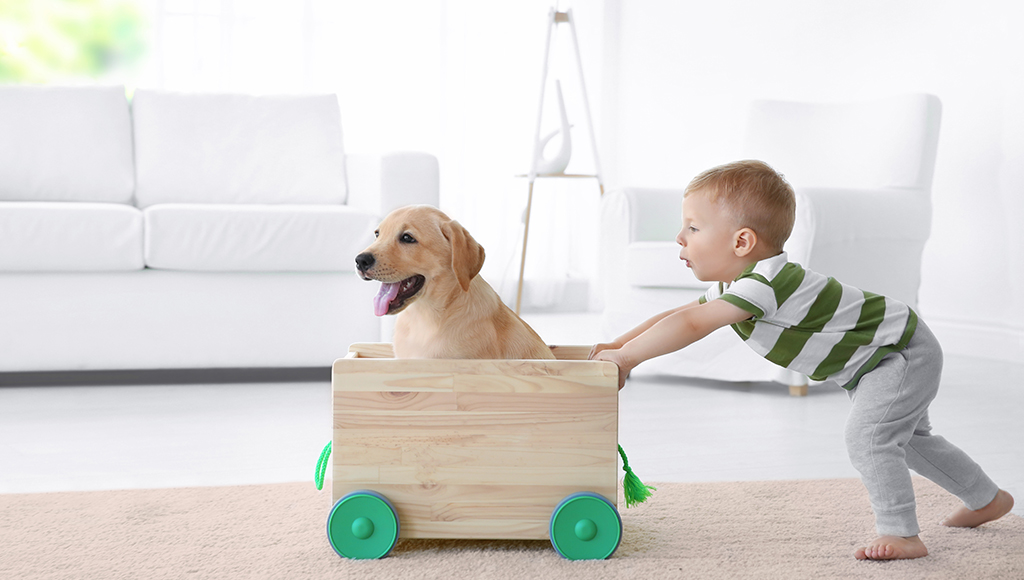 Teaching Dog Safety to Children