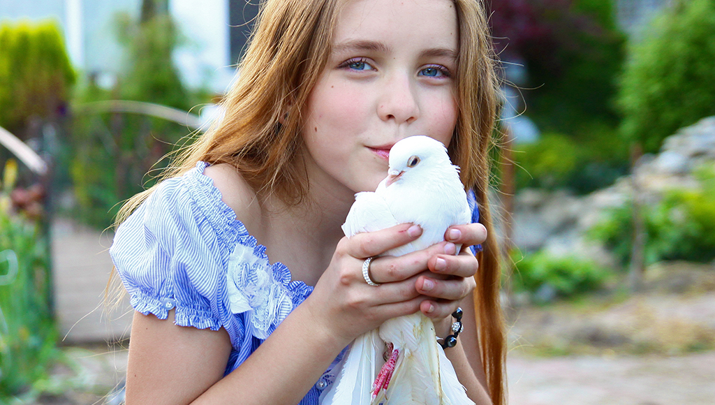 Doves and Pigeons as Pets
