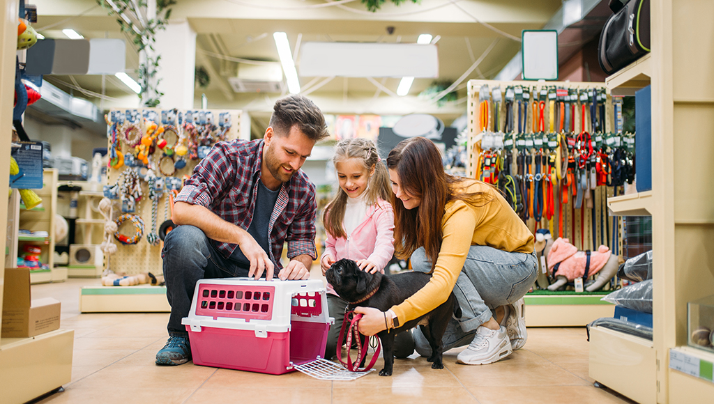 Dr. Elliott: Shopping in a Pet Store